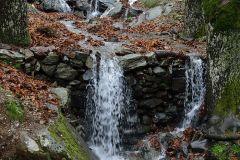 DSC_4590-1-1-100x100-WATER